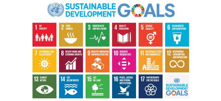 FN mål