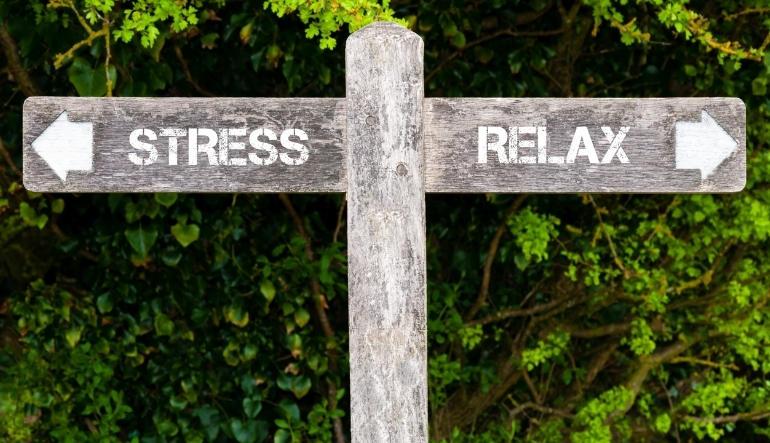 Stress eller relax? FOTO